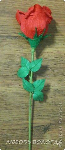 Мастер-класс Свит-дизайн Моделирование конструирование Делаем листочки для роз Проволока Скотч фото 1