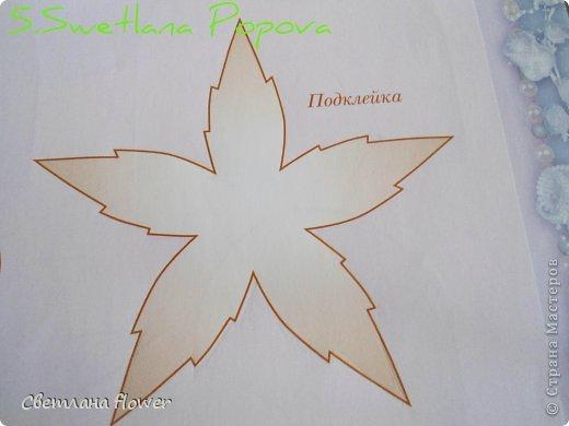 Поделка изделие Моделирование конструирование Моя Роза из Фоамирана  Фоамиран фом фото 6