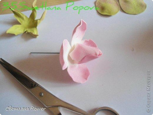 Поделка изделие Моделирование конструирование Моя Роза из Фоамирана  Фоамиран фом фото 36