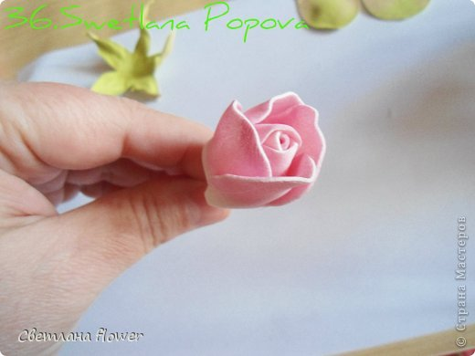 Поделка изделие Моделирование конструирование Моя Роза из Фоамирана  Фоамиран фом фото 37