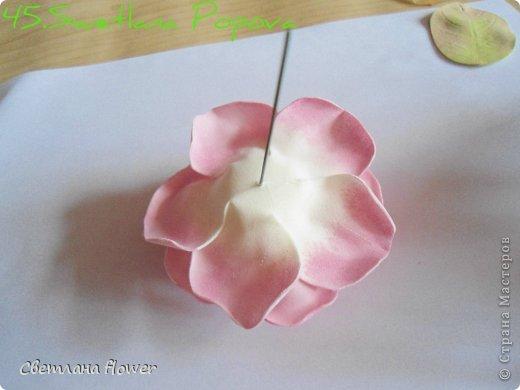Поделка изделие Моделирование конструирование Моя Роза из Фоамирана  Фоамиран фом фото 46