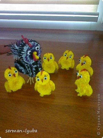 Это была первая мама-курица и цыплята