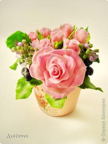 """Да простит меня Катюша,""""срисовала"""" я ее идею черники и роз. Последнее время потянуло меня на всяческие композиции с розами и ягодами. Намаялась я с фотиком,снимая эту работу,в планах было купить ему хорошую замену,но увы...,хотела в этом посте поплакаться на жизнь(накрыло последнее время),но зачем нам печалиться...Более реальный цвет на 3 и 6 фото. Слепила за два вечера,тонировала пастелью. Весны вам!!!!!!! фото 5"""