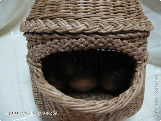 Поделка изделие Плетение Домики для лука с подробностями Трубочки бумажные фото 15