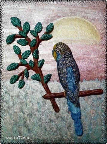 Слепила домашнего питомца - волнистого попугая Рики. фото 1