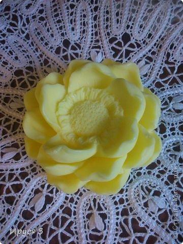 Мыльце сварила из основы , добавила масло хлопковых семян , аромат цветущей липы )) фото 9