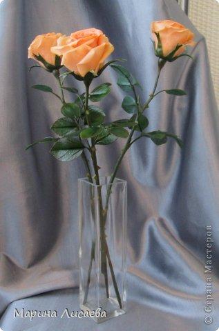 Здравствуйте, мои дорогие жители СМ! Я к вам сегодня с розами. Давно ничего не лепила, переключилась на другие виды творчества, а тут заказ. Ну и конечно вы- первые и самые компетентные судьи! фото 2