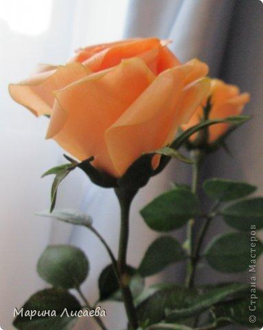 Здравствуйте, мои дорогие жители СМ! Я к вам сегодня с розами. Давно ничего не лепила, переключилась на другие виды творчества, а тут заказ. Ну и конечно вы- первые и самые компетентные судьи! фото 5