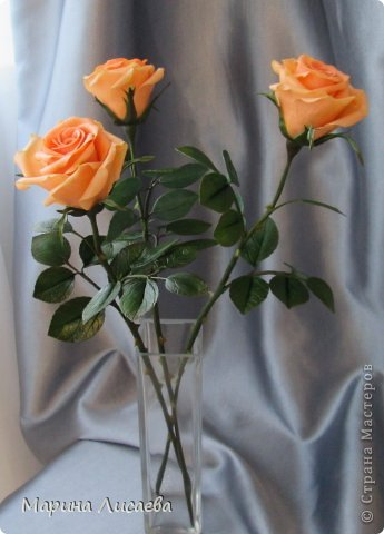 Здравствуйте, мои дорогие жители СМ! Я к вам сегодня с розами. Давно ничего не лепила, переключилась на другие виды творчества, а тут заказ. Ну и конечно вы- первые и самые компетентные судьи!