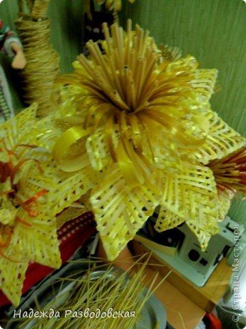 sam_1643 Поделки из соломы: плетение из соломки для начинающих, изделия своими руками