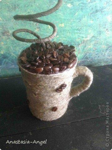 Моё первое кофейное дерево. фото 4