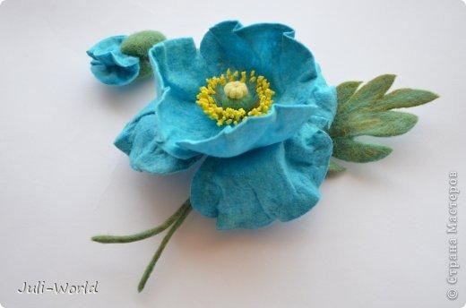 Меконопсис (голубой мак) фото 2