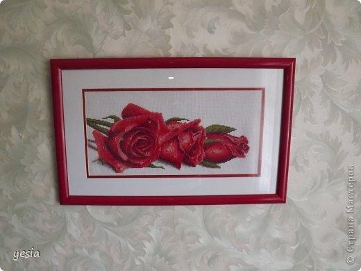 Розы в росе Канва: Аида 14 Нитки: Гамма (перевод из DMC) фото 3
