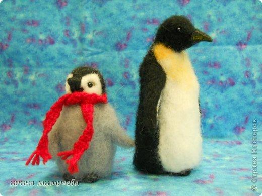 Эта семья сделана на заказ для коллекционера пингвинов! фото 1