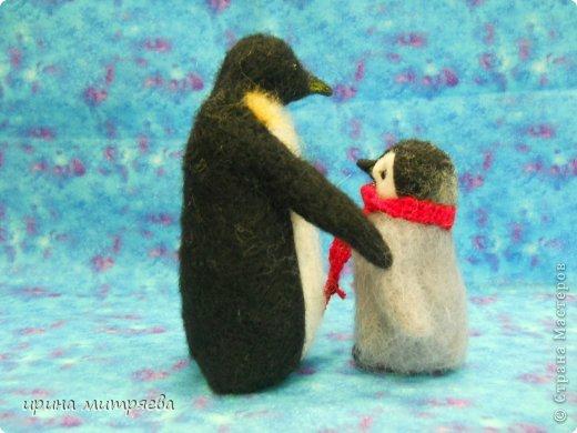 Эта семья сделана на заказ для коллекционера пингвинов! фото 4