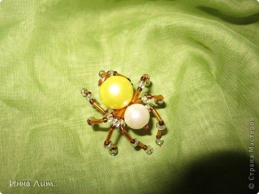 Приветствую вас,жители!Увидела на одном сайте как делать паучков  http://www.shawkl.com/2011/09/beaded-spider-tutorial.html  .Решила сама попробовать так,для смеха.Понравилось.Можно комбинировать как хочешь,какие хочешь бусины,бисер любой.Вариантов много.Их можно применить для кулона,для броши,для заколки,для брелка.Можно сделать паутинку,повесить паучка-уже панно.И главное получаются они очень красивые и все разные.В общем главное включить фантазию. фото 2