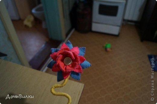 Вот такой не большой цветник завелся у меня дома  в ожидании лета. фото 3