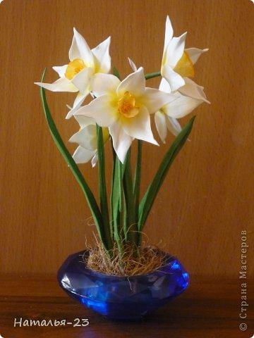 Весенние  цветочки... фото 1