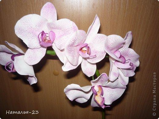 Весенние  цветочки... фото 4