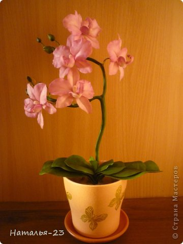 Орхидея... фото 1