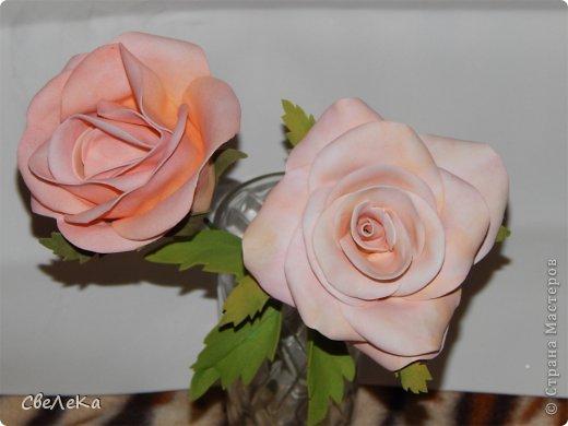 Приветствую всех, кто заглянул на мою страничку. Представляю свой дебют работы с фоамираном и создания розы. Впечатление от этого материала восхитительные. Хочется делать и делать новые цветочки.... фото 2