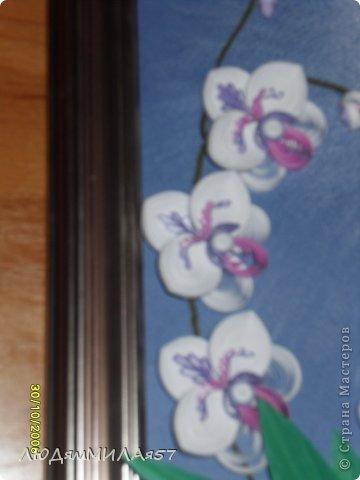 Здравствуйте жители Страны Мастеров!Хочу познакомить вас со своей весёлой семьёй орхидей.Эта работа мой глубокий реверанс Анастасии Бертовой за её привязанность к этим цветам,которая передалась и мне.Нижняя веточка - точная копия её розовых орхидей.Спасибо,Настя за МК,ещё раз прошу прощения, не умею делать ссылки и научить некому. фото 2