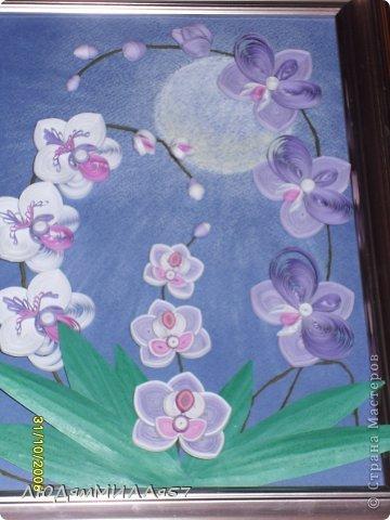 Здравствуйте жители Страны Мастеров!Хочу познакомить вас со своей весёлой семьёй орхидей.Эта работа мой глубокий реверанс Анастасии Бертовой за её привязанность к этим цветам,которая передалась и мне.Нижняя веточка - точная копия её розовых орхидей.Спасибо,Настя за МК,ещё раз прошу прощения, не умею делать ссылки и научить некому. фото 8