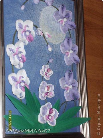 Здравствуйте жители Страны Мастеров!Хочу познакомить вас со своей весёлой семьёй орхидей.Эта работа мой глубокий реверанс Анастасии Бертовой за её привязанность к этим цветам,которая передалась и мне.Нижняя веточка - точная копия её розовых орхидей.Спасибо,Настя за МК,ещё раз прошу прощения, не умею делать ссылки и научить некому. фото 5