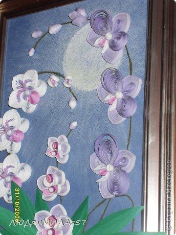 Здравствуйте жители Страны Мастеров!Хочу познакомить вас со своей весёлой семьёй орхидей.Эта работа мой глубокий реверанс Анастасии Бертовой за её привязанность к этим цветам,которая передалась и мне.Нижняя веточка - точная копия её розовых орхидей.Спасибо,Настя за МК,ещё раз прошу прощения, не умею делать ссылки и научить некому. фото 6