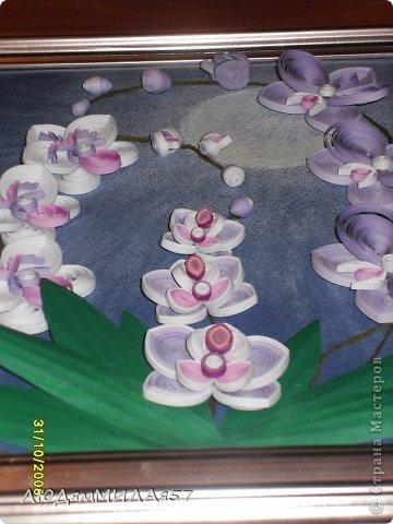 Здравствуйте жители Страны Мастеров!Хочу познакомить вас со своей весёлой семьёй орхидей.Эта работа мой глубокий реверанс Анастасии Бертовой за её привязанность к этим цветам,которая передалась и мне.Нижняя веточка - точная копия её розовых орхидей.Спасибо,Настя за МК,ещё раз прошу прощения, не умею делать ссылки и научить некому. фото 7