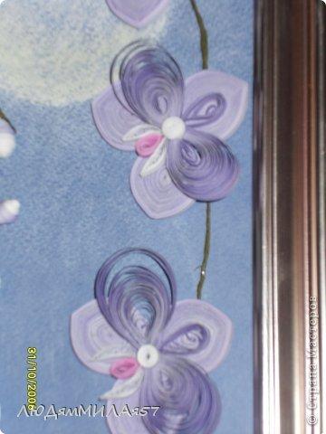 Здравствуйте жители Страны Мастеров!Хочу познакомить вас со своей весёлой семьёй орхидей.Эта работа мой глубокий реверанс Анастасии Бертовой за её привязанность к этим цветам,которая передалась и мне.Нижняя веточка - точная копия её розовых орхидей.Спасибо,Настя за МК,ещё раз прошу прощения, не умею делать ссылки и научить некому. фото 3
