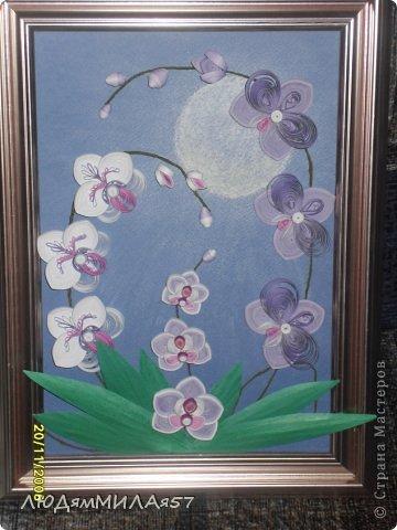 Здравствуйте жители Страны Мастеров!Хочу познакомить вас со своей весёлой семьёй орхидей.Эта работа мой глубокий реверанс Анастасии Бертовой за её привязанность к этим цветам,которая передалась и мне.Нижняя веточка - точная копия её розовых орхидей.Спасибо,Настя за МК,ещё раз прошу прощения, не умею делать ссылки и научить некому. фото 1