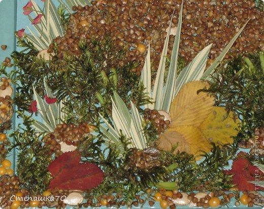 Приветствую всех, кто заглянул! Мы с сыном любим делать поделки в детский сад и любим кротиков. Сюжет взят из детской раскраски. Все остальное дело наших рук. Чего здесь только нет - гречка, пшено, манка, кукурузная крупа, горох, тыквенные и арбузные семечки, мох (с сыном из леса принесли, мыли, сушили), листья засушеные, фантазия и руки. Рамка сделана по МК https://stranamasterov.ru/node/43761?tid=451, использую во многих работах. фото 4