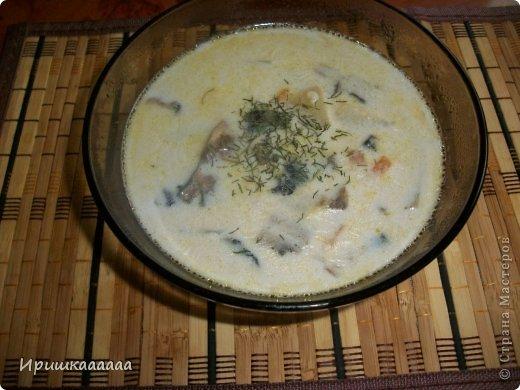 Кулинария Мастер-класс Молочный суп с шампиньонами  Овощи фрукты ягоды Соль фото 1