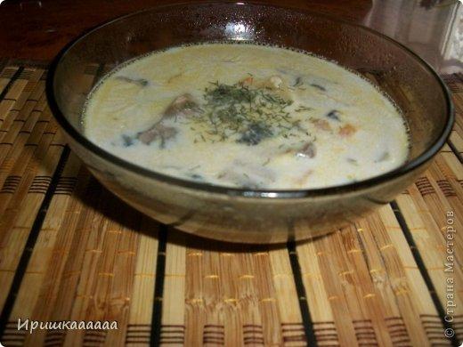 Кулинария Мастер-класс Молочный суп с шампиньонами  Овощи фрукты ягоды Соль фото 18