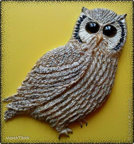 Здравствуйте!!! Я к Вам с очередной совой, очень мне нравятся эти птицы.  фото 1