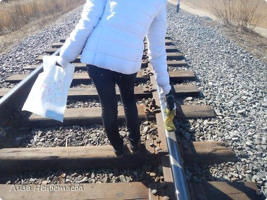 Всем привет!!! Сегодня мы с Алёнчиком06 ходили погулять к железной дороге. И конечно же прихватили с собой кукол!!! фото 3