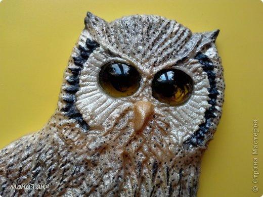 Здравствуйте!!! Я к Вам с очередной совой, очень мне нравятся эти птицы.  фото 3