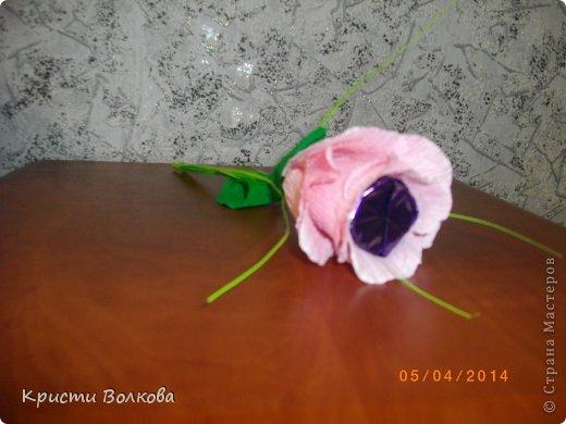 Сумочку сделала из упаковки из под детского питания... Презентовалась вместе с небольшими сувенирчиками внутри, к дополнению к сумочке сделала розу с конфеткой внутри. фото 5