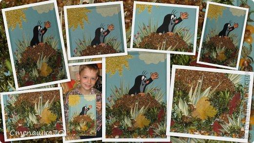Приветствую всех, кто заглянул! Мы с сыном любим делать поделки в детский сад и любим кротиков. Сюжет взят из детской раскраски. Все остальное дело наших рук. Чего здесь только нет - гречка, пшено, манка, кукурузная крупа, горох, тыквенные и арбузные семечки, мох (с сыном из леса принесли, мыли, сушили), листья засушеные, фантазия и руки. Рамка сделана по МК https://stranamasterov.ru/node/43761?tid=451, использую во многих работах. фото 6