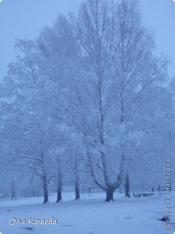 Вчера вечером пошёл снег. Сплошной стеной.  Фото сделаны в городском парке (автор Рая Кочева) фото 3