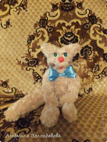 Старший сын попросил сшить ему кота, вот такой чудной кот получился ))) фото 1