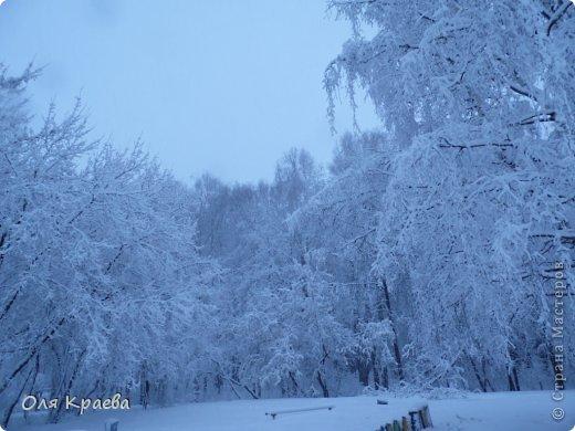 Вчера вечером пошёл снег. Сплошной стеной.  Фото сделаны в городском парке (автор Рая Кочева) фото 1
