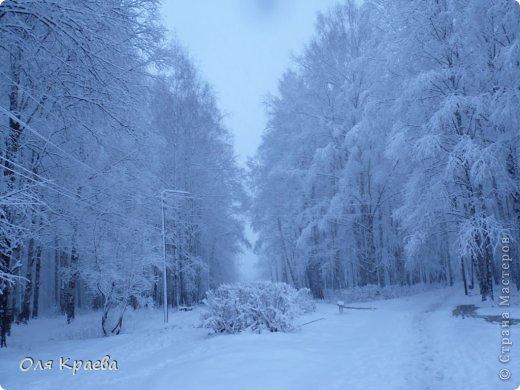 Вчера вечером пошёл снег. Сплошной стеной.  Фото сделаны в городском парке (автор Рая Кочева) фото 2