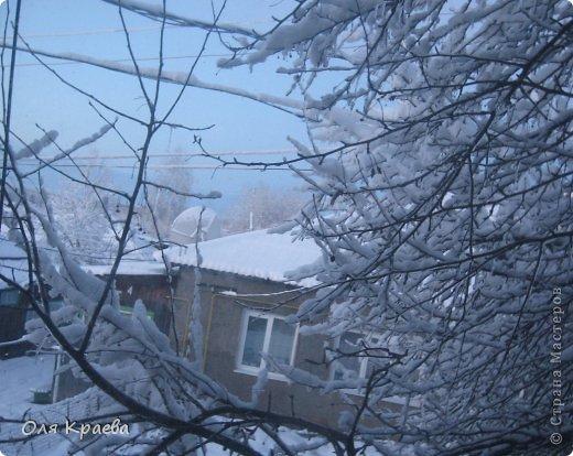 Вчера вечером пошёл снег. Сплошной стеной.  Фото сделаны в городском парке (автор Рая Кочева) фото 5