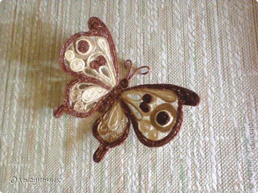Мастер-класс Поделка изделие Моделирование конструирование МК Филигранной бабочки Шпагат фото 1