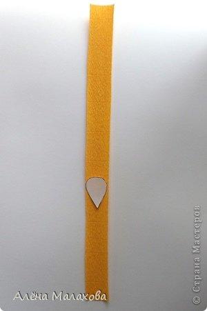 Мастер-класс Флористика Роза из гофрированной бумаги Бумага гофрированная Клей фото 3