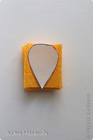 Мастер-класс Флористика Роза из гофрированной бумаги Бумага гофрированная Клей фото 4