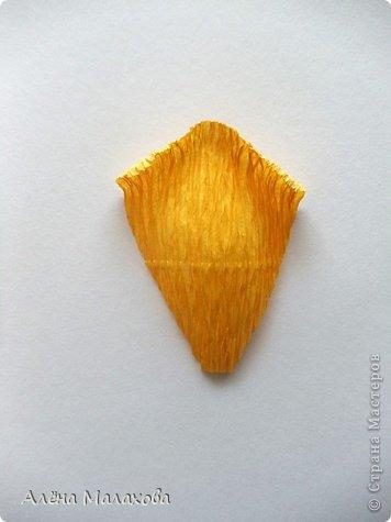 Мастер-класс Флористика Роза из гофрированной бумаги Бумага гофрированная Клей фото 21