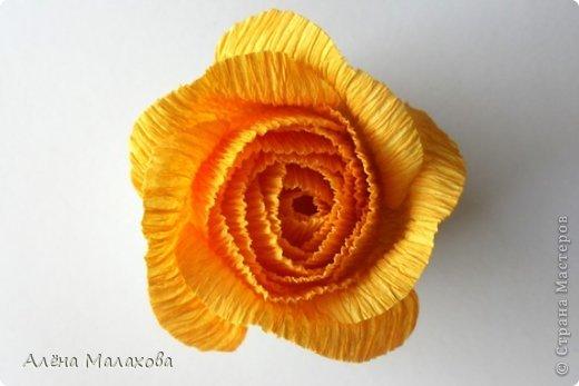 Мастер-класс Флористика Роза из гофрированной бумаги Бумага гофрированная Клей фото 23
